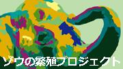 Banner-elephantBPs