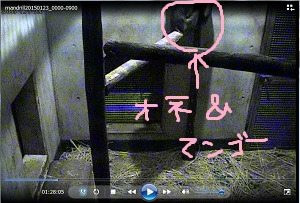 blog20150224_03
