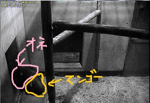 blog20150224_04