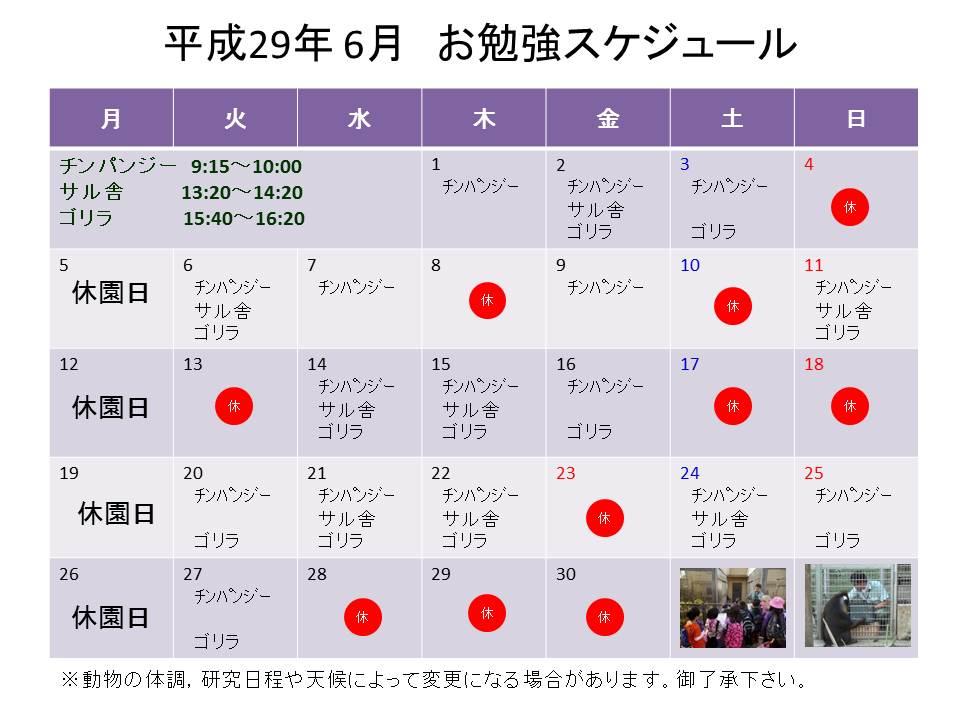 http://www5.city.kyoto.jp/zoo/uploads/image/study201706r.jpg