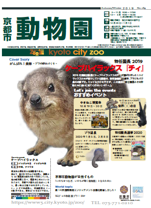 市長 2020 京都 選挙 京都市長選、選挙広告に千住博氏「無断掲載」訴え 門川氏側「認識の違いがあった」: